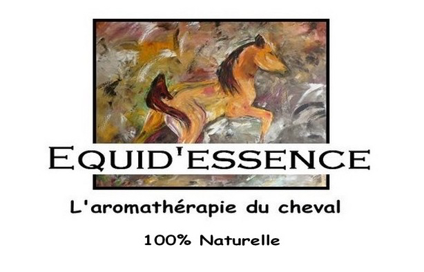 Equid'essence par Sylvie Burger