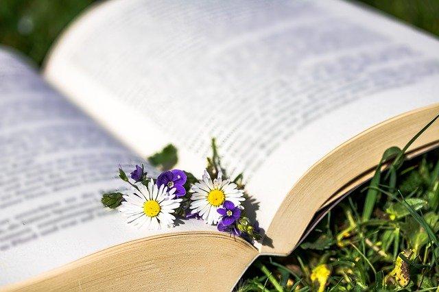 Comment vous faire rembourser vos séances de naturopathie